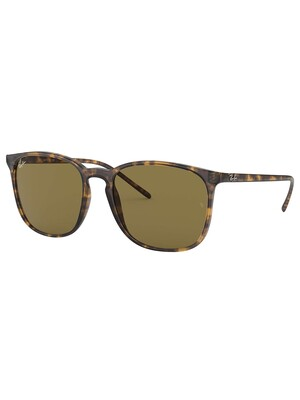 Ray-Ban RB4387 Square Sunglasses - Tortoise