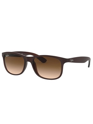 Ray-Ban RB4202 Andy Sunglasses - Brown Gradient